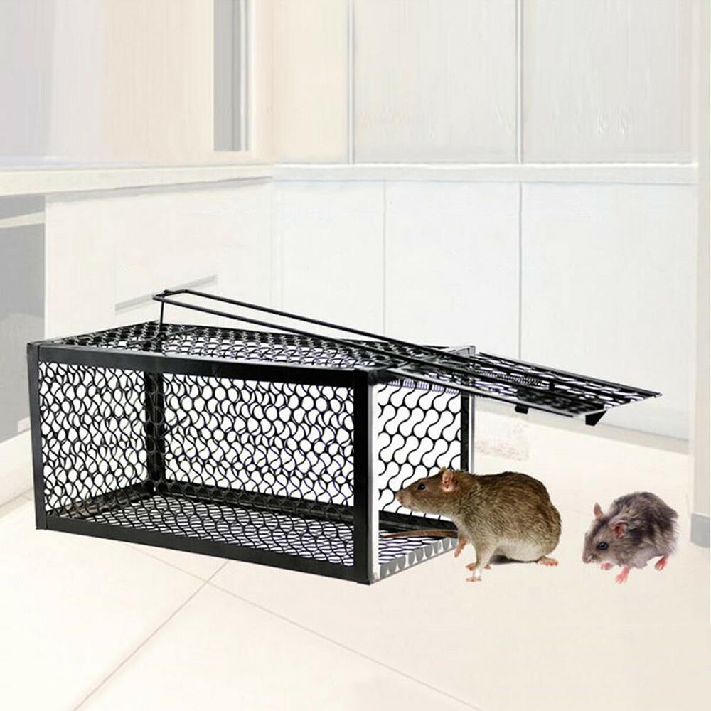 Rat Trap Cage Small Live Animal Pest Rodent Mouse Control Catch Hunting Traps Mouses Traps