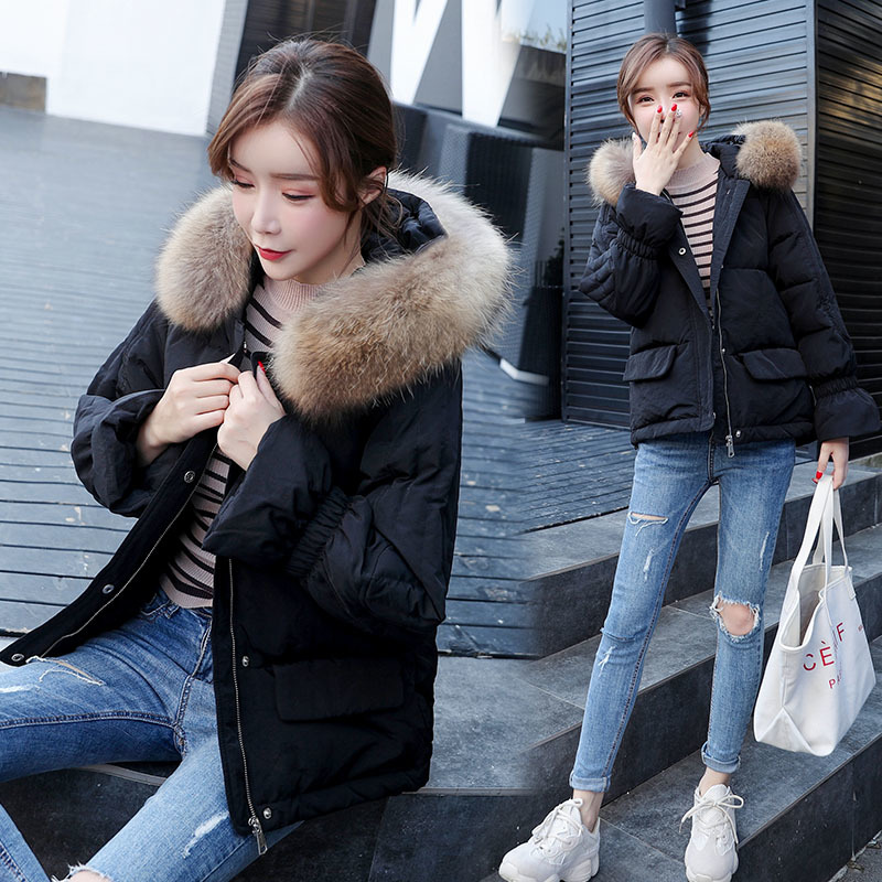 Winter Down Coat Female Brand Clothes 2019 Warm Duck Down Jacket Women Fashion Down Parka Raccoon Fur Coats Hiver LW1698