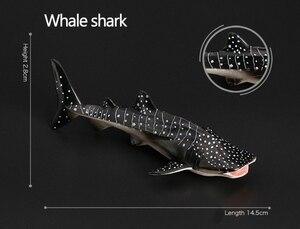 Image 4 - Originele oceaan sealife dieren sets bule whale shark jaws tijger killer whale lederschildpad kids leren speelgoed kinderen gift