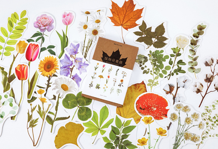 Good Plant Paper Postcard(1pack=30pieces)