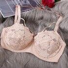 Plus Size Lace Bras ...