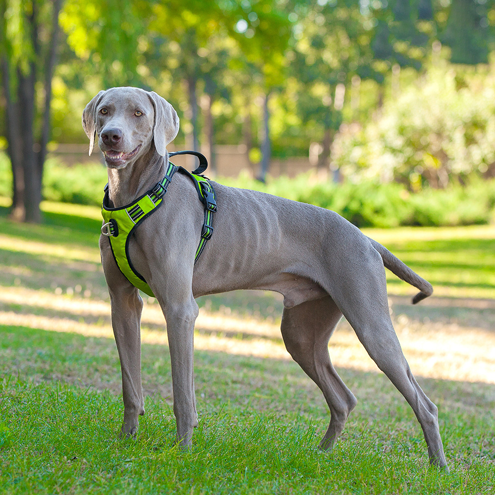 Durable Reflective Pet Dog Adjustable Harness Big Dog Harness Pet Walking Harness For Small Medium Large Dogs Pitbull