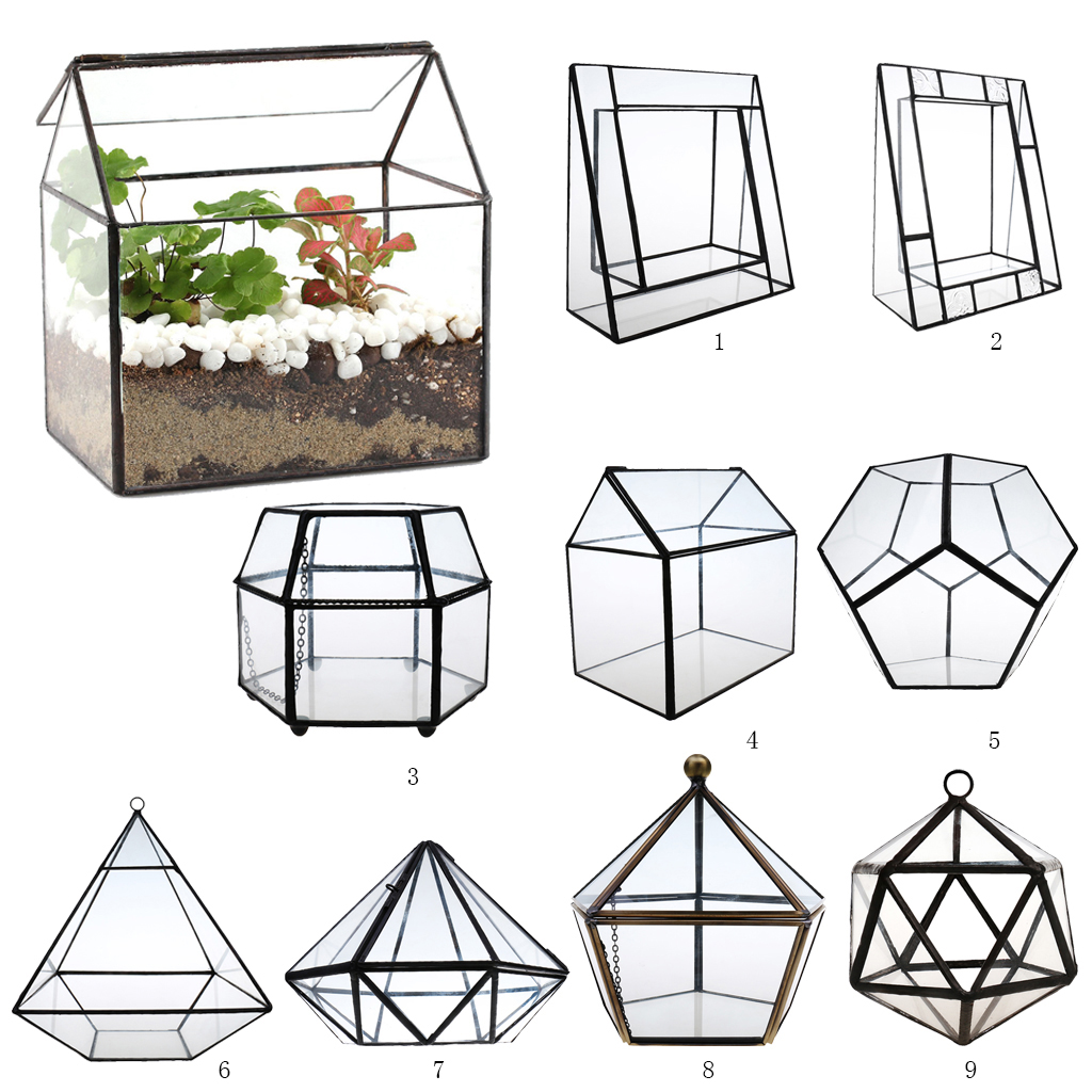 Irregular Glass Geometric Terrarium Box Tabletop Succulent Air Plant Fern Moss Pot Planter