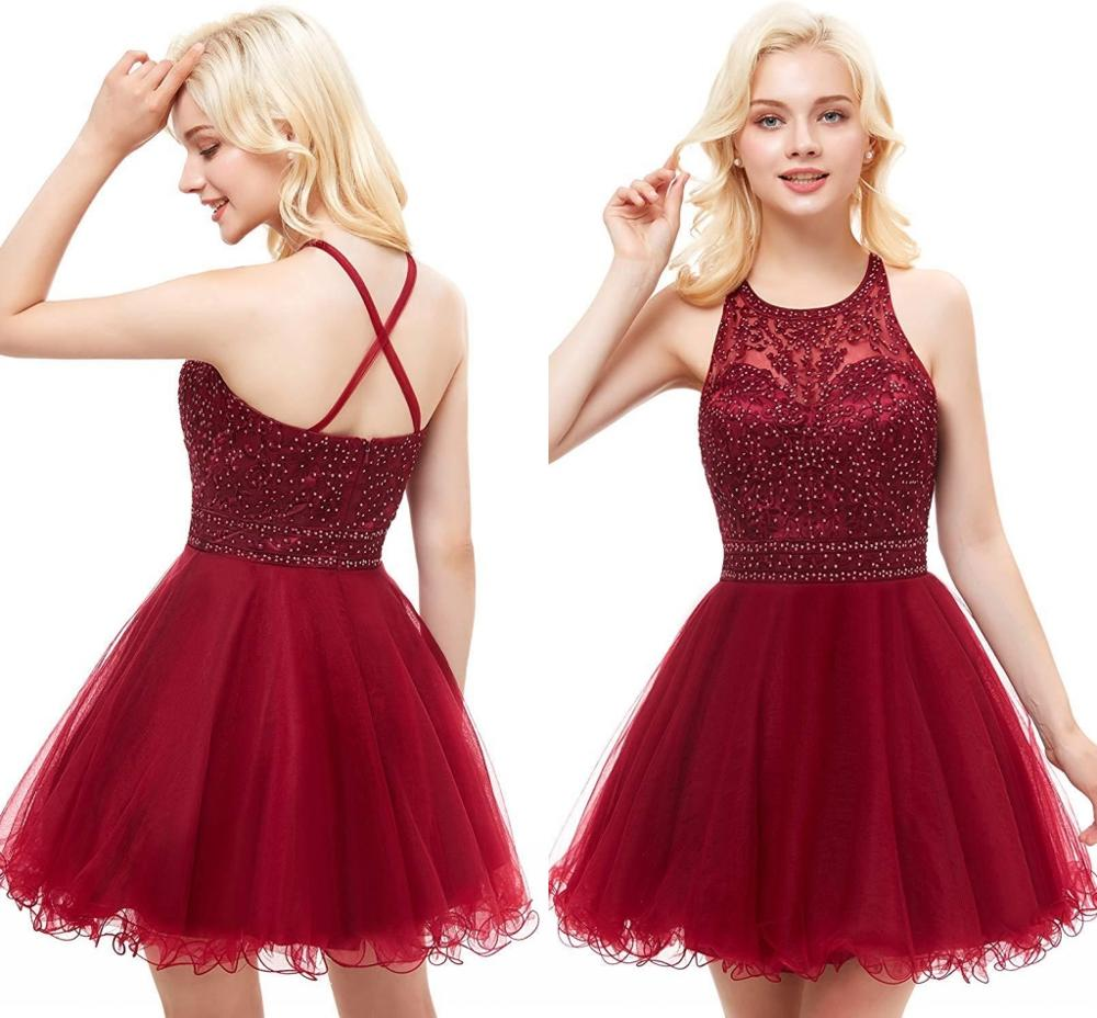 Short Prom Dresses for Juniors Embroidery Appliques Tulle Homecoming Dress Backless Teens Semi Formal Special Occasion Dresses