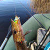Best 1PCS Crankbait Fishing Lure Minnow Fishing Lures cb5feb1b7314637725a2e7: 110A|110B|110E|299A|299B|299C|299D|299E|299F|M26A|M26B|M26C|M26D|M26E|M26F|M26G|M26H|M26I|M26J