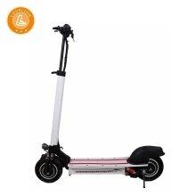 LOVELION 10 inch foldable Electric longboard kick scooter 1200W power double Driving motor adult folding bike e scooters adults