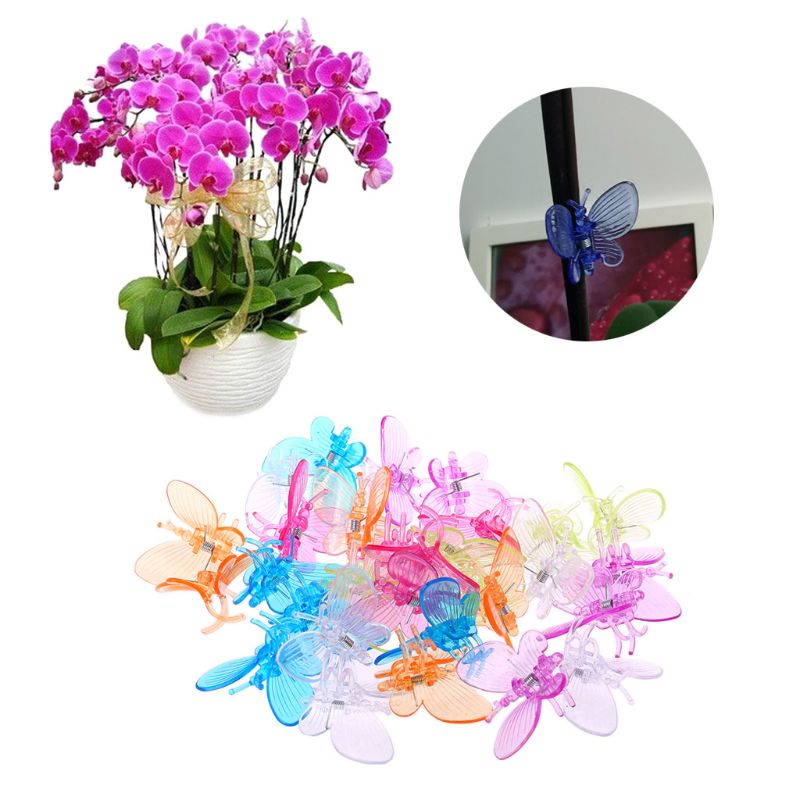 30 Pcs Butterfly Orchid Clips Plant Clips Garden Flower Vine Support Clips Cute