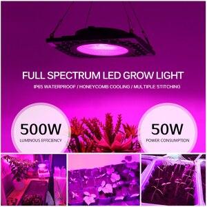 Image 2 - LED Grow Light 500W Full Spectrumประสิทธิภาพการส่องสว่างสูง50W COB PhytoโคมไฟสำหรับโรงงานSeedling Growและดอกไม้