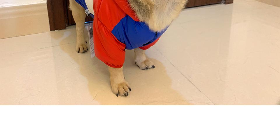 Nueva ropa de invierno para perros, abrigo impermeable con capucha 28