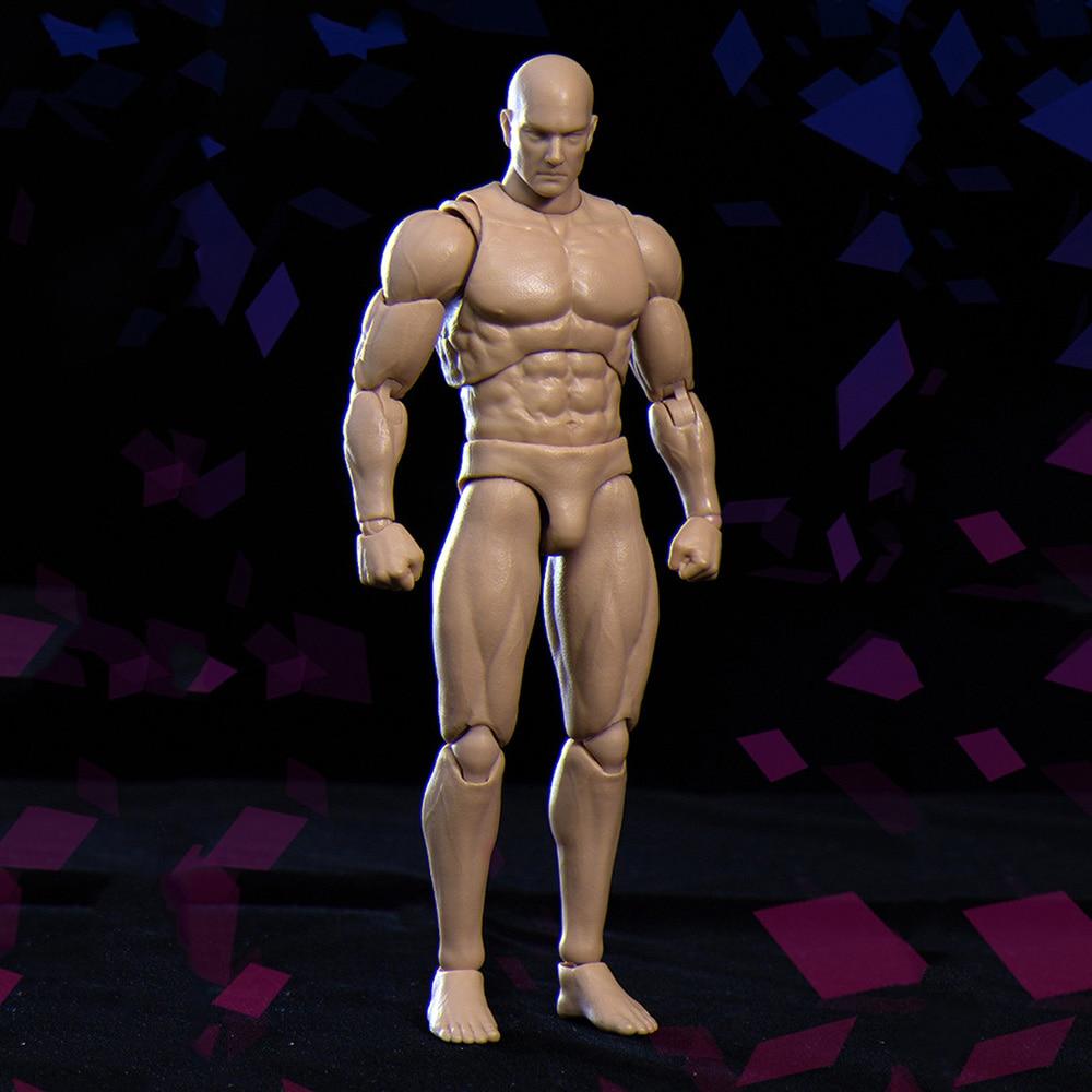 В наличии BMS 1:12 VSD003 сильный мышц тела 6