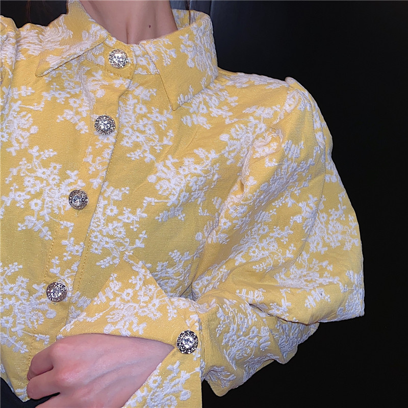 Hd4caddbe3b274d79af7850cd8cd07845s - Spring / Autumn Turn-Down Collar Puff Long Sleeves Embroidery Floral Blouse