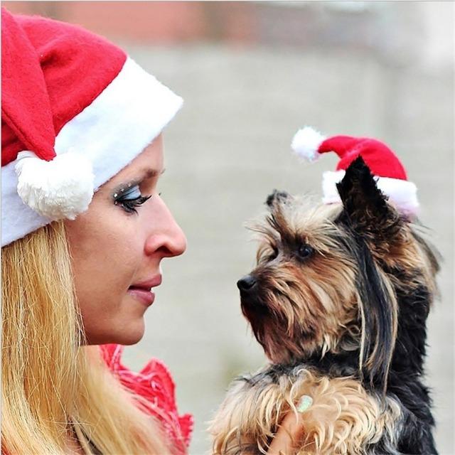 Christmas Pet Santa Claus hat