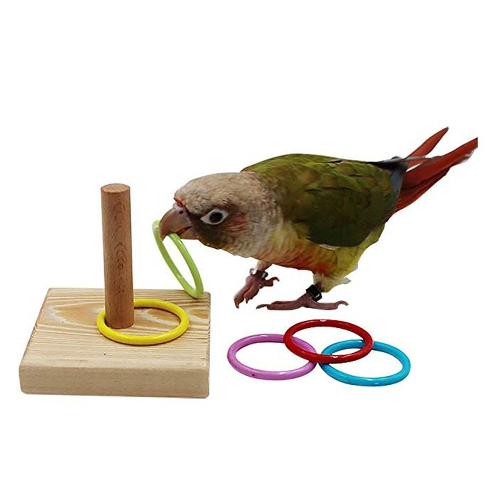 Behogar Parrot Stacking Ring Toys Set Intelligence Training Stacking Color Rings Parrot Ring Game DIY Ornament Parrot Ring Toy