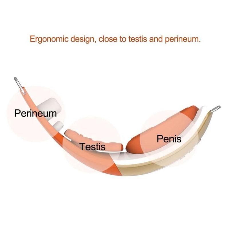 partycja penisa