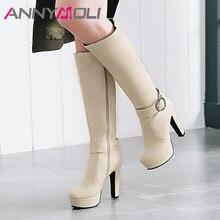 купить ANNYMOLI Winter Knee High Boots Women Zip Platform Thick Heel Long Boots Buckle Extreme High Heel Shoes Female Autumn Size 33-45 дешево