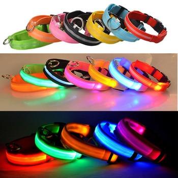 Dog LED Glowing Collar 3