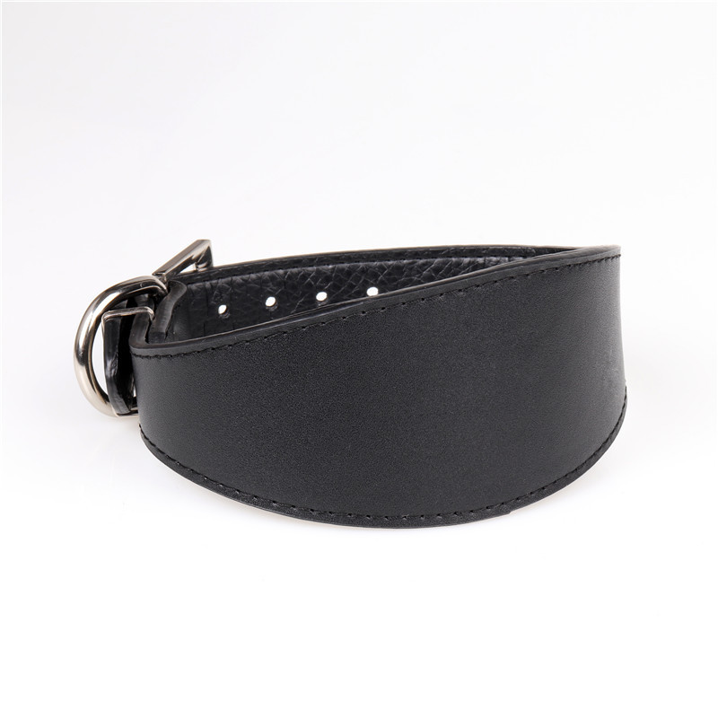 Jin Sportshero Te New Style Solid Black Dog Genuine Leather Neck Ring Pet Supplies Manufacturers Customizable-