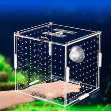 Aquarium Isolatie Box Aquarium Kleine Bak Fokken Doos Transparant Acryl Enkele Raster Dubbele Rooster Aquarium Benodigdheden
