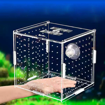 Aquarium Isolation Box Fish Tank Small Fry Breeding Box Transparent Acrylic Single Grid Double Grid Aquarium Supplies brennan jobs l small fry