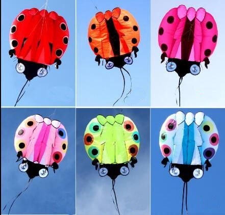 NEW ARRIVE 3D HIGH QUALITY2 SQUARE NYLON CLOTHE POWER LADYBIRD WINDSOCKS / INFLATABLE SOFTWARE KITES FOR KITE FESTIVAL image