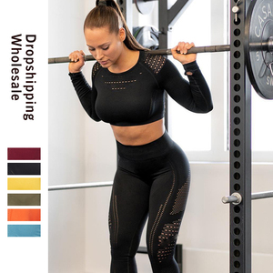 Women Seamless Gym Sets High Waist Gym Mesh Leggings Shirts Suit Long Sleeve Fitness Workout Sports Running Thin Sport Sets(China)