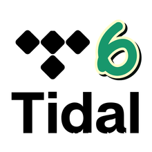 Brand New Tidal HIFI Works On PCs Smart TVs Set Top Boxes Android IOS Tablets PCs