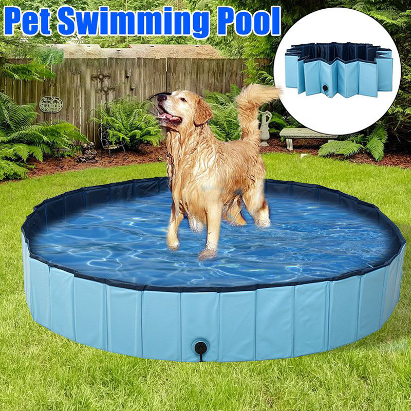 ultimate dog pool