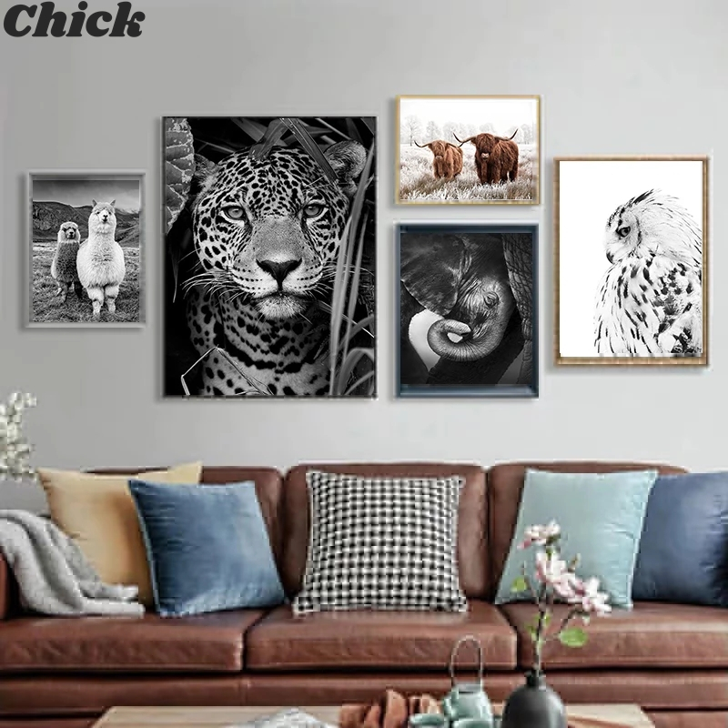 Black And White Animal Canvas Art Lion Cheetah Owl Alpaca Posters And Prints Living Room Images Painting Nordic Home Decoration