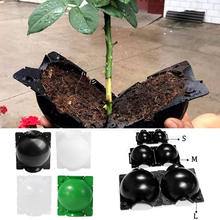 Ball-Breeding-Case Rooting Grow-Box Plant Gardening-Plant-Root High-Pressure for 5PCS