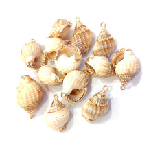 New Conch Shell Pendants Irregular Shape Natural Pendant Jewelry for Charms Necklace Bracelets Making 12x40-16x30mm