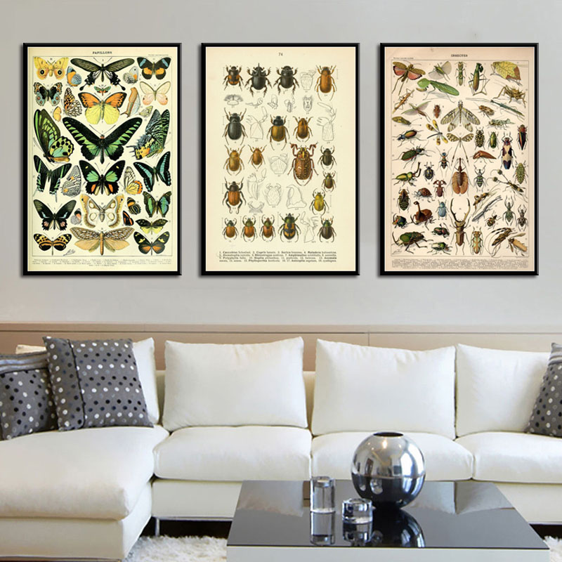 New Arrival  Antique Beetle Vintage Variety Of Insects Science Chart Beetle Bees Art Canvas Painting Poster Wall