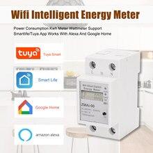 Wi fi inteligente medidor de energia monofásica ruído trilho consumo de energia kwh medidor wattmeter funciona com alexa e google casa