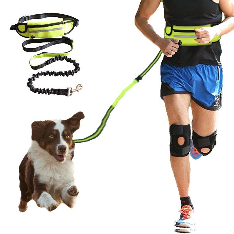 Perro mascota cinturón elástico funcionamiento de tracción cuerda libre perro cuerda de tracción cuerda accesorios collar mascotas cachorro de perro Correa tracción cinturón Correas    - AliExpress
