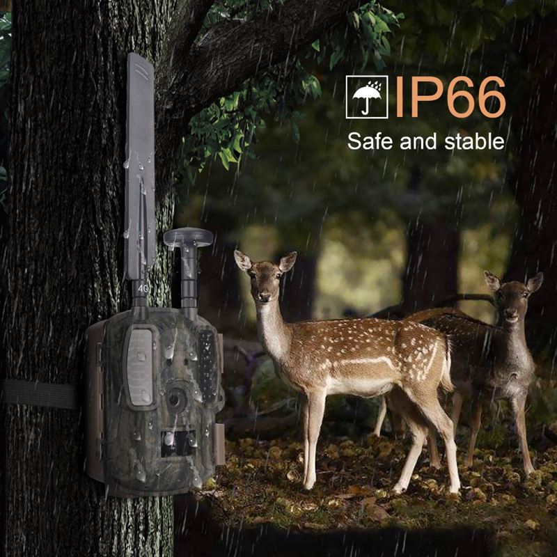 Hunting Camera Gps Wireless 4G Fdd Lte Remote App Control Camo Hunting Game Trail Camera Wildlife Photo Trap 4G 3G Hd|Sports & Action Video Camera|   - title=