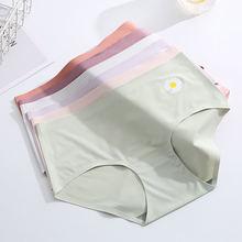 Wasteheart для женщин модные фиолетовые из хлопка со средней