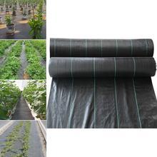 Rolnych Anti tkanina na trawę gospodarstwa zorientowane na maty bariery chwastów czarne plastikowe ściółki grubsze ogród sad tkanina kontrolująca chwasty tanie tanio