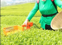 Portable small brushless electric tea picker tea tree trimmer
