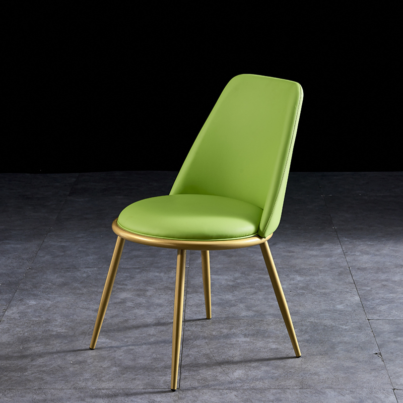 Nordic Leisure Designer Chair Light Luxury Dining Chair Iron Art Simple Modern Soft Sofa Dining Chair Backrest Stool Household