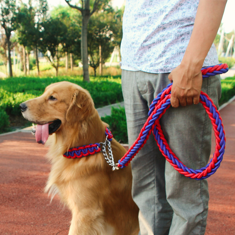 Dog Hand Holding Rope Dog Rope Medium Large Dog P Pendant Neck Ring Golden Retriever Labrador Husky Anti-Bite
