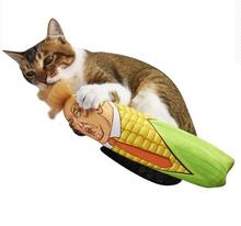 President of the United States to make cat toy cat cat mint interaction rod tease cats feather plush pet supplies interaction of color