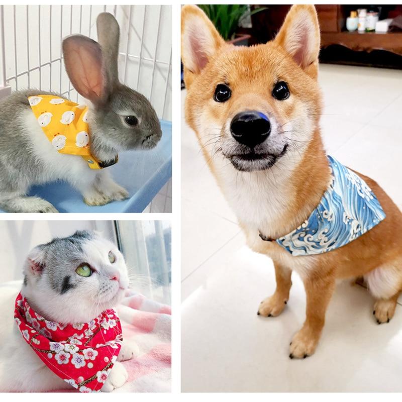 kitten collar (5)