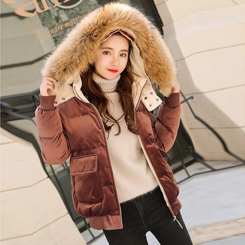 Doudoune hiver mince vêtements d'extérieur chauds 2019 grand col de fourrure or velours court à capuche vers le bas coton manteau femmes Parka femme D099