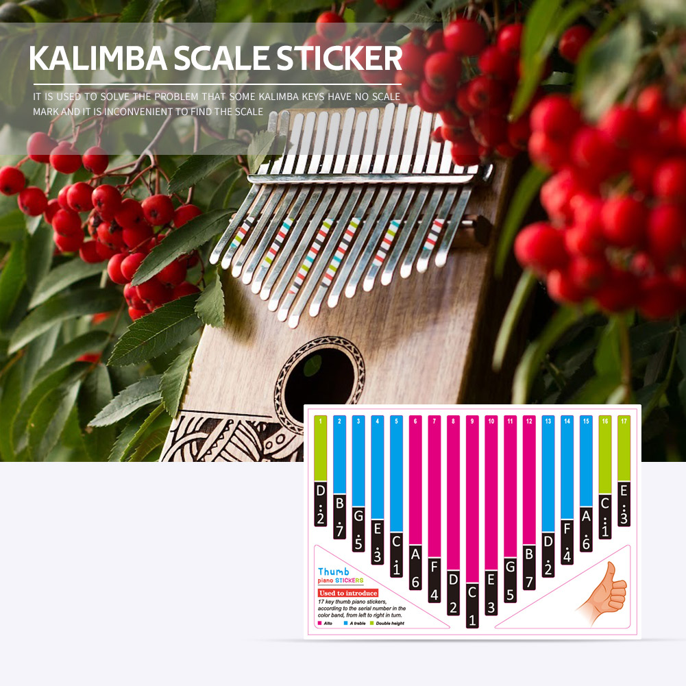 1pcs Kalimba Scale Sticker Thumb Finger Piano Key Note Stickers for Beginner Learner Percussion Musical Instrument Accessories