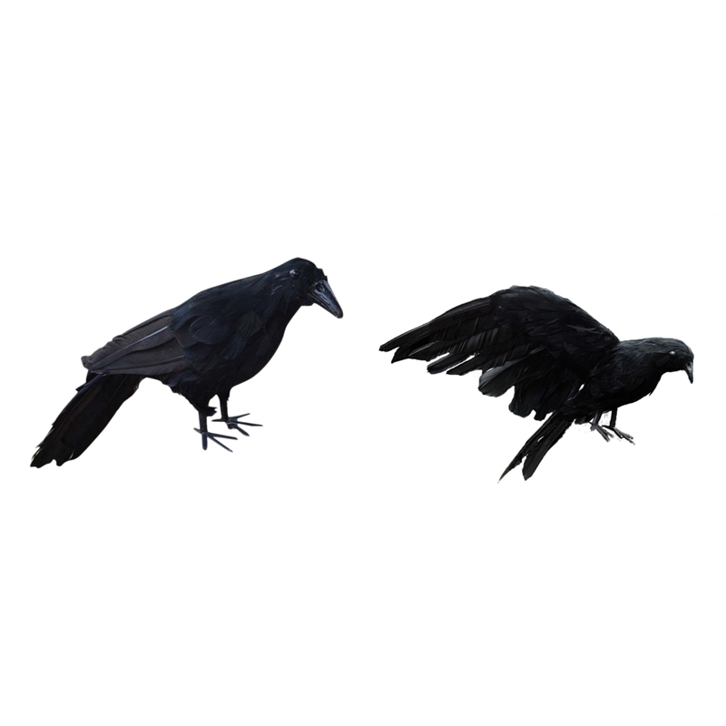 2 Pcs Realistic New Black Raven Feathered Crow Halloween Fancy Dress Prop Accessory 30Cm & 25X40Cm