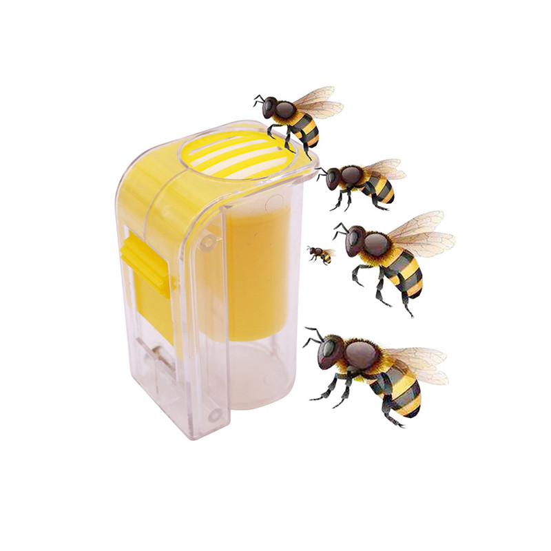 1 Pcs Bee Queen Marker Bottle Breathable Transparent ABS Anti-escape Apiary Beekeeping A Good Tool For Modern Beekeepers