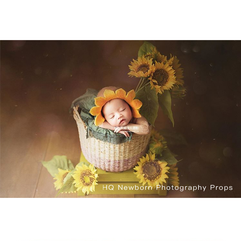 Newborn Photography Vintage Lamp Baby Photo Phooting Prop Artificial Flower Props Studio Accessories Retro Mini Small Decoration