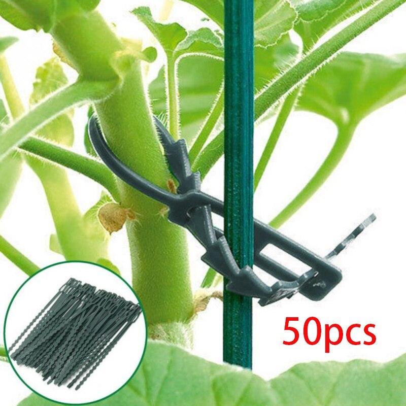 50pcs Self Locking Nylon Cable Wire Zip Tie Cord Strap Plastic Gardening Ties Garden Supplies