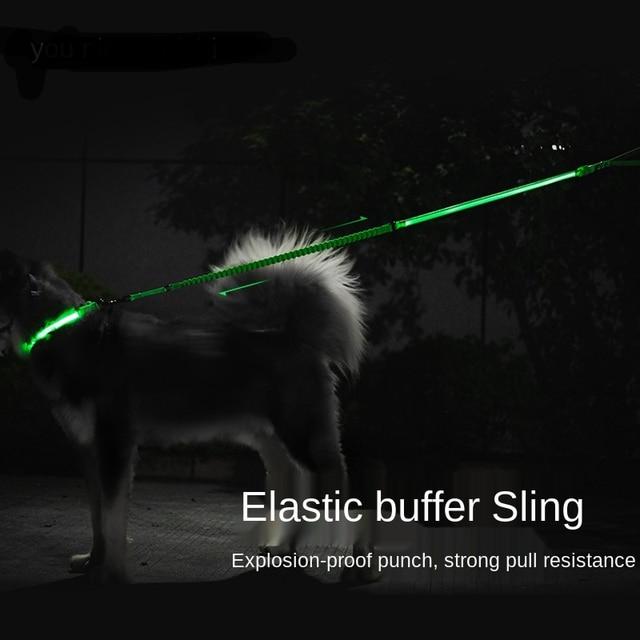 LED Dog Leash & Collar Traction Grip Leash   2