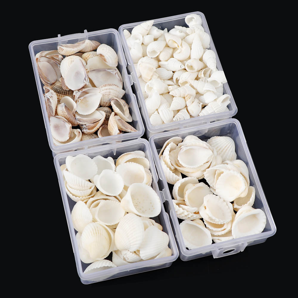 About 28g/Box Natural Mix Shells Mini Conch Corn Screw Wall Decoration DIY Aquarium Landscape Seashells Crafts/Party Decor