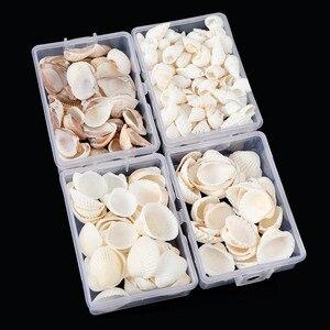About 28g/Box Natural Mix Shells Mini Conch Corn Screw Wall Decoration DIY Aquarium Landscape Seashells Crafts/Party Decor